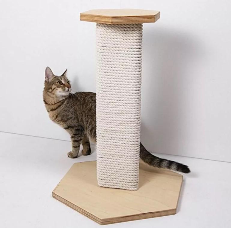 Когтеточка об которую кошка будет точить когти